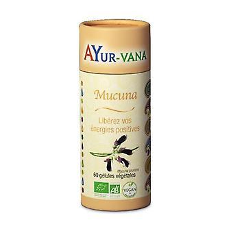 Organic Mucuna 60 capsules