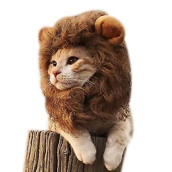 M القط أغطية الرأس القط مضحك لطيف قبعة الحيوانات الأليفة الملحقات dt5530