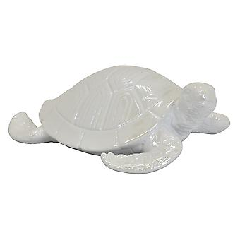 Plutus Brands Ceramic Tortoise Tabletop in White Porcelain