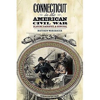 Connecticut i amerikanska inbördeskriget: slaveri, offer och överlevnad (Driftless Connecticut serie & Garnet böcker)