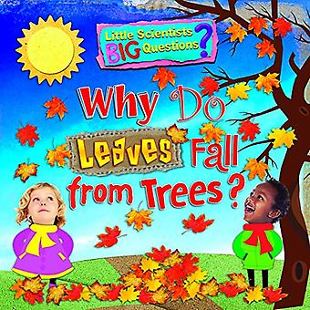 Why Do Leaves Fall From Trees? (Little Scientists BIG Questions)