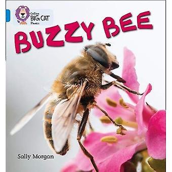 Collins Big Cat Phonics - BUZZY abeilles: Bande 04/bleu