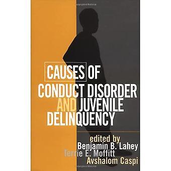 Oorzaken van gedragsstoornis en jeugdcriminaliteit