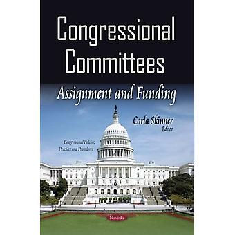 CONGRESSIONAL COMMITTEES ASSIGNMENT AN (Congressional Policies, Practices and Procedures)