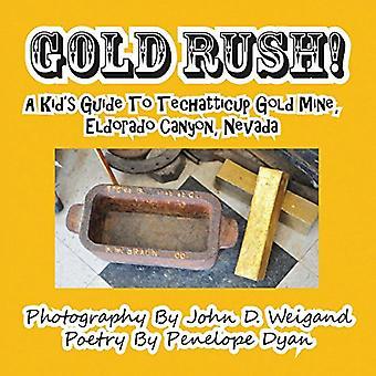 Gold Rush! a Kid's Guide to Techatticup Gold Mine - Eldorado Canyon -