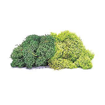 Hornby R7195 Jäkälä - Suuri vihreä sekoitus