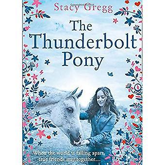 De Thunderbolt-Pony