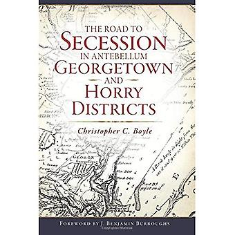 Vägen till Secession i Antebellum Georgetown och Horry distrikt