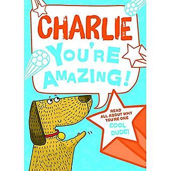 Charlie - vous êtes incroyable!: Lisez tout sur pourquoi tu es un mec Cool!