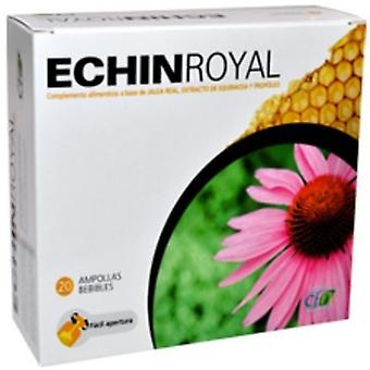CFN Echin Royal 20 ampollas
