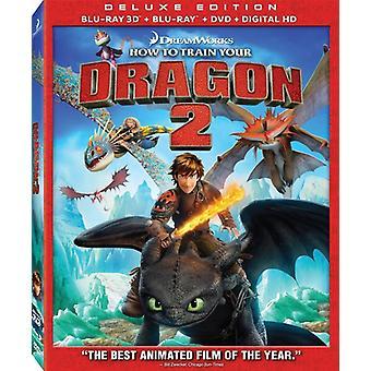 Gewusst wie: Train Your Dragon 2 [BLU-RAY] USA import