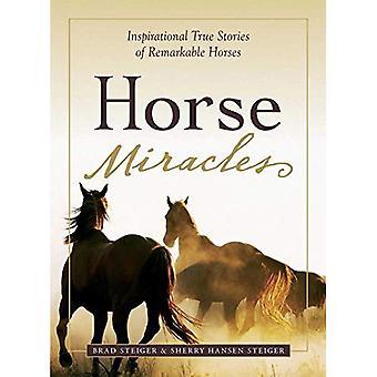 Milagres de cavalo (relançamento organisadas): Inspiradoras histórias verdadeiras de cavalos notáveis