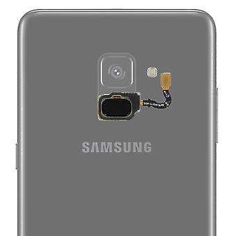 Samsung Galaxy A8 Home Button + Connection Pad-schwarz