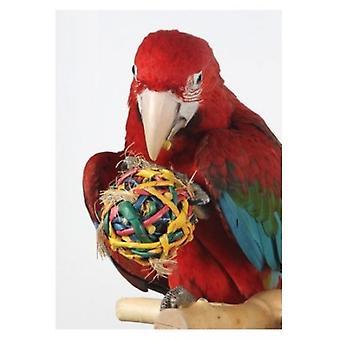 Tropican Hari Bola Forraje Tejida (fåglar, leksaker)