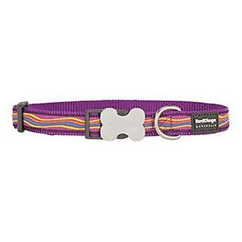 Red Dingo Dog Collar Dreamstream Purple XL
