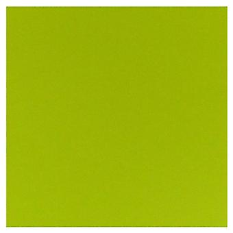 Papicolor Apple Green 12x12 Inch Paper Pack