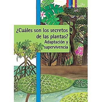 Cuales Son Los Secretos dea Las Plantas? Adaptacion Y Supervivencia (Klikkaa: Ciencia Basica / Basic Science)