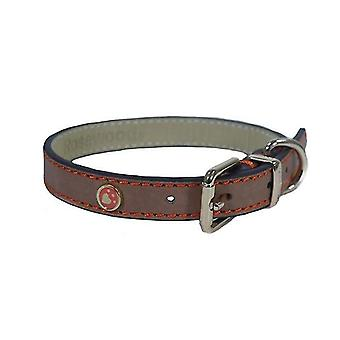 Pet leashes luxury leather dog collar 10 - 14-inch  brown