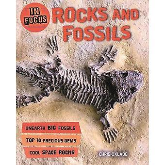 フォーカス - フォーカスによる化石岩・岩と化石 - 97807534