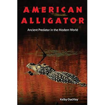 Amerikansk Alligator: Antika rovdjur i den moderna världen