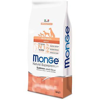 Monge NS Adult Salmon and Rice (Dogs , Dog Food , Dry Food)