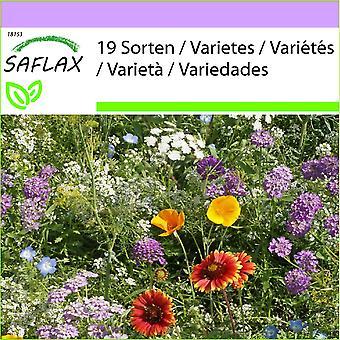 סאקפלקס-1000 זרעים-מיקס באגים מועילים-שופכים את החרנים לשוק