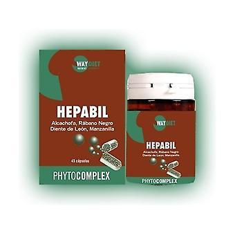 Phytocomplex Hepabil 45 capsules