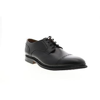 Bostonian Adult Mens Bridgeport Cap Leather Cap Toe Oxfords & Lace Ups