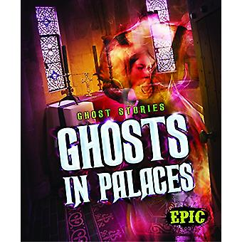 Ghosts in Palaces by Lisa Owings - 9781626174306 Book