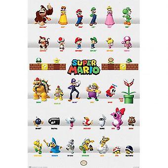 Super Mario Poster Charakter Parade 278
