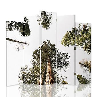 Dekorativa rumsavdelare, 5 paneler, dubbelsidig, canvas, tall i perspektiv