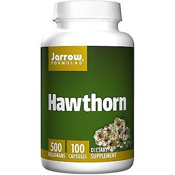 Hawthorn 500 mg (100 Kapsler)-Jarrow formler