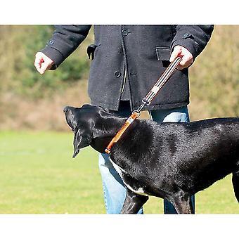 Long Paws Comfort Traffic Dog Lead