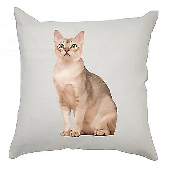 Animal Cushion Cover 40cm x 40cm Siamese Cat