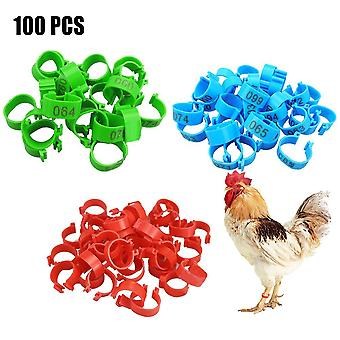 Chicken Leg Bands 20 Mm Chicken Poultry Rings 3 Colors Pigeon Geese Quail Bird Ring Carry Tools Feeding Number Tag