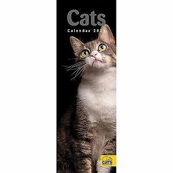 Otter House 2021 Slim Calendar-cat Protection Cats
