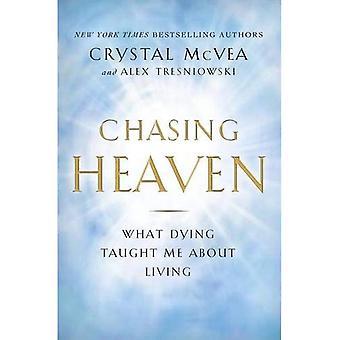 Jagar himlen: Vilken döende lärde mig om att leva
