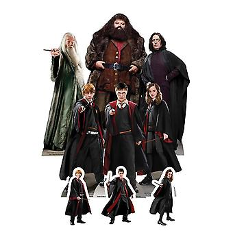 Harry Potter Table Top Cardboard Cutouts Party Pack of 9