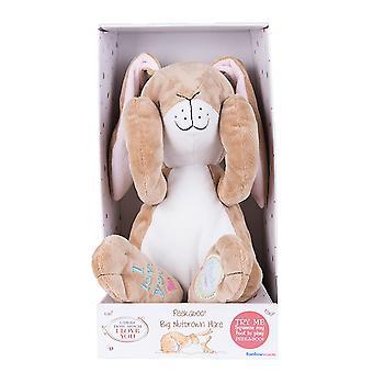 Adivinha o quanto eu te amo Nutbrown Hare Peek-A-Boo!