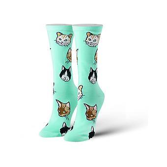 Cool Socks Cats Crew Socks in Multi