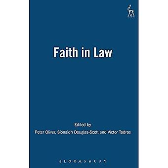 Faith in Law: Essays in Legal Theory