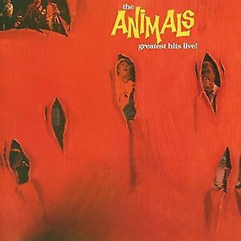Animals - Greatest Hits Live [CD] USA import