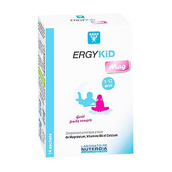Ergykid Mag 14 packets (Red Berries)