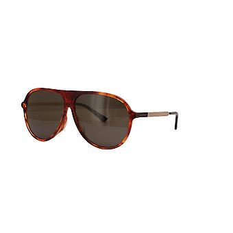 Gucci Asian Fit GG0829SA 003 Havana/Brown Sunglasses