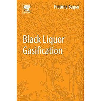 Black Liquor Gasification