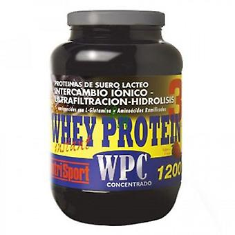 Nutrisport Whey Protein 3 High Biological Value Protein