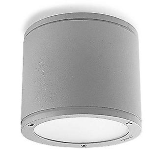 2 Light Outdoor Surface Mounted Ceiling Light Grey IP65