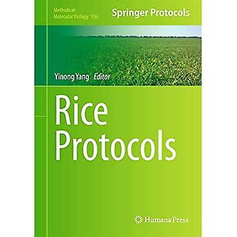 Ris protokoller