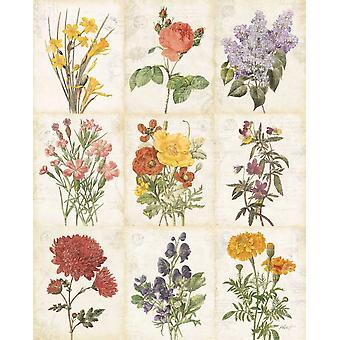Blumen des Monats 9-Patch-Plakat-Druck von Katie Pertiet