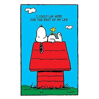 Snoopy Lay Here Poster Poster Print